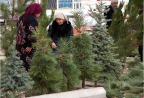 Бишкекте Балаты базары өтөт