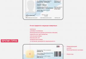 Биометрикалык паспорттор үстүбүздөгү жылдын акырында берилет