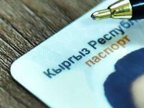 Россияда жасалма кыргызстандык паспорт менен өзбек жараны кармалды