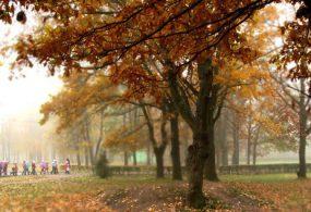 Ноябрь жылуу болот