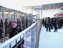 Кыргызстан завершил демаркацию границы с Казахстаном