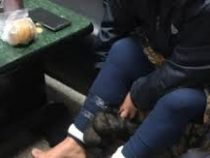 Под юбкой у контрабандистки нашли две дюжины мышей