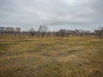 Новый парк появится в Бишкеке