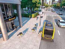Созданы роботы-собаки, доставляющие посылки