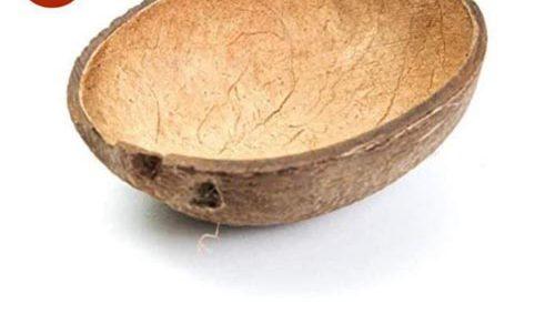 Покупателям предлагают кокосовую скорлупу за 42 доллара