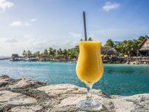В США открылась вакансия мечты на райском острове