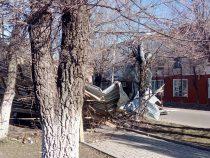 МЧС: Сильный ветер снес крыши домов и повалил деревья в Токмоке