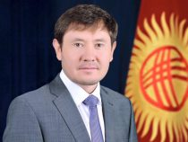 Директором госцирка назначен Фархад Бекманбетов