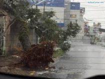 В Южной Америке продолжается период аномальных дождей