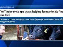В Великобритании запустят сайт знакомств для домашнего скота