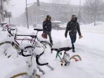 Мощный снегопад обрушился на столицу Канады