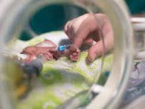 Мальчик родившийся с весом всего 268 граммов  благополучно выписан из больницы