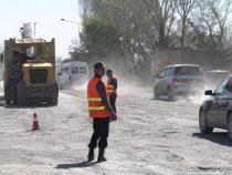Около четырех тысяч деревьев могут пойти под снос из-за ремонта дорог в Бишкеке