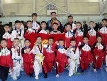 Отличные результаты показали кыргызстанцы на турнире по таэквондо