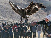 Игры кочевников будут проходить в Кыргызстане ежегодно