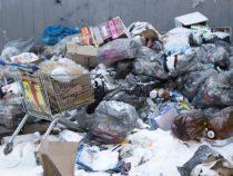 Европа полностью откажется от пластиковой посуды с 2021 года