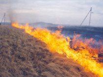 Энергетики призывают граждан не разводить костры вблизи ЛЭП