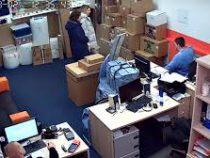 В Москве офисного сотрудника, проломив потолок, атаковал кот