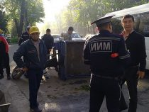 В столице сбили сотрудника «Бишкекзеленхоза»