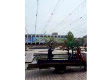 На площади Ала-Тоо демонтируют пластиковые деревья