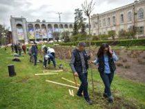 В Бишкеке ко Дню здоровья посадили деревья