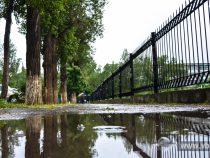 Холодно и дождливо будет на этой неделе в Бишкеке