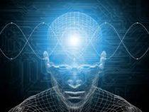 Учёные нашли простой способ восстановить память
