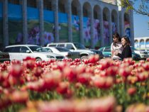 В честь дня Победы кыргызстанцы отдохнуть четыре дня подряд