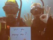 Австралиец сделал девушке предложение в необычном месте