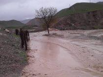 Дожди в Лейлекском районе спровоцировали сход селей
