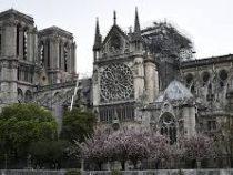 Роман Гюго «Собор Парижской Богоматери» активно скупают после пожара