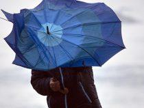 Осторожно! В Бишкеке ожидается сильный ветер