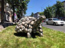 В Бишкеке появились черепашки из габионов