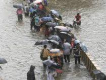 ВИндии восемь человек погибли из-за циклона «Фани»