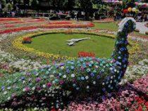 Фестиваль цветов стартовал в Ташкенте