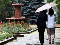В начале июня ожидаются дожди