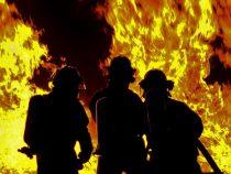 На западе Канады бушуют лесные пожары
