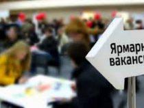 Очередная Ярмарка вакансий пройдет в Бишкеке