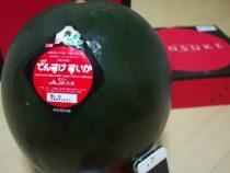 Японец выложил за черный арбуз целое состояние