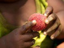 Более 50 детей насмерть отравились фруктами в Индии