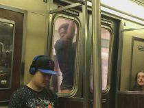 Безрассудный смельчак прокатился на метро опасным способом