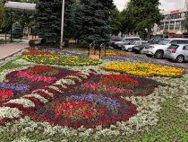Около двухсот тысяч цветов высажены на площади «Ала-Тоо» в Бишкеке