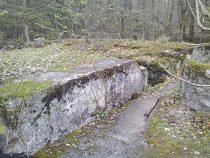 Туннель, который может вести к Янтарной комнате, обнаружили в Польше