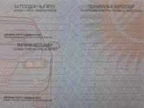 Свидетельства о регистрации транспорта нового образца начнут выдавать в августе
