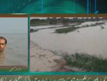 Репортёр в прямом эфире рассказывал о наводнении, пока вода подступала к его шее