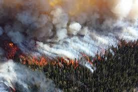 Режим ЧС введён уже в пяти регионах России, горит более 2,7 млн га леса