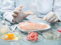 С начала июля с пищевым отравлением к медикам обратились 67 человек