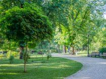 В Бишкеке  появится новый сквер