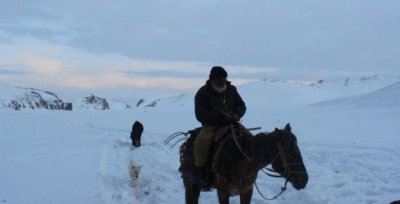 Долину Ак-Сай Нарынской области накрыл снегопад
