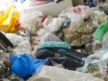 В Тихом океане собрали более 40 тонн мусора